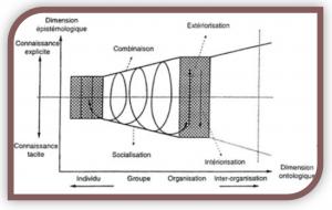 De l'Individu vers le groupe, l'organisation, entre les organisations