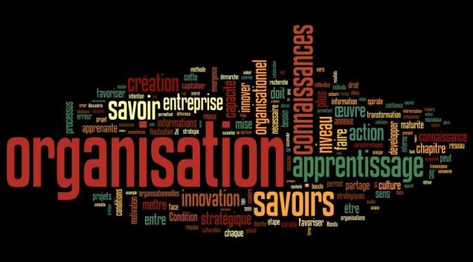 Du savoir individuel à l'apprentissage organisationnel, un petit pas vers l'innovation